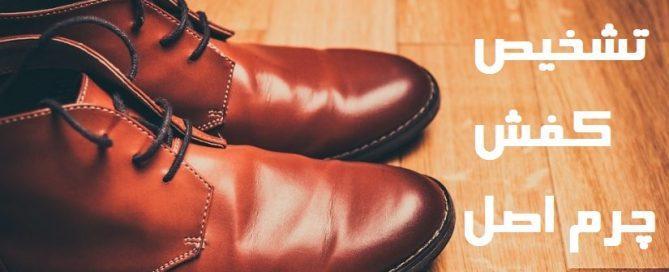 تشخیص کفش چرم اصل